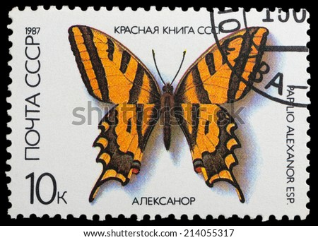 USSR - CIRCA 1987: A stamp printed in the USSR shows butterfly Aleksanor, series, circa 1987 - stock photo