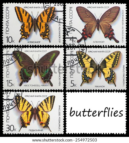 USSR - CIRCA 1987: A stamp printed in the USSR shows butterfly, circa 1987 - stock photo