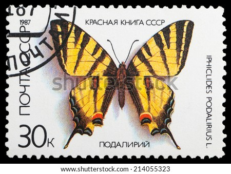 USSR - CIRCA 1987: A stamp printed in the USSR shows butterfly Podalirius, series, circa 1987 - stock photo