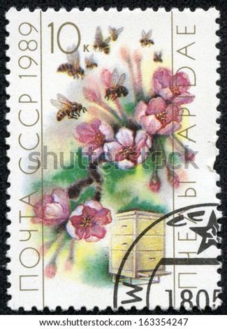 USSR- CIRCA 1989: A stamp printed in the USSR shows worker bee collecting pollen, circa 1989. - stock photo