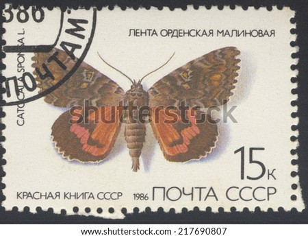 USSR - CIRCA 1986: A stamp printed in USSR, shows Butterfly Catocala sponsa , from series Red Book USSR, circa 1986. - stock photo