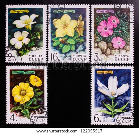 USSR - CIRCA 1977: A stamp printed in USSR shows different kinds of flowers, circa 1977. - stock photo