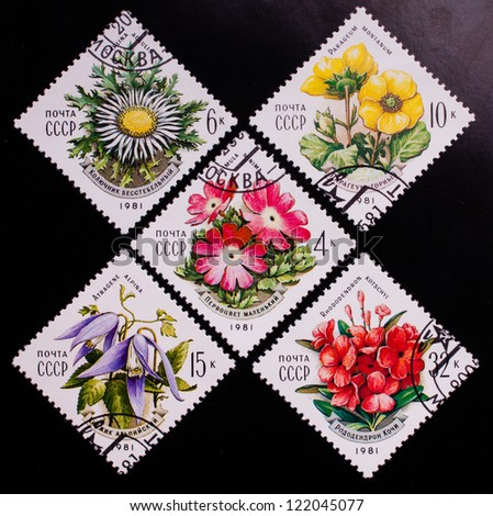 USSR - CIRCA 1981: A stamp printed in USSR shows flowers of different kinds, circa 1981. - stock photo