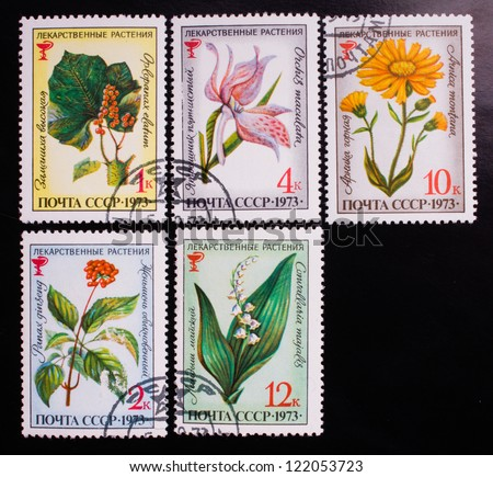 USSR - CIRCA 1973: A stamp printed in USSR shows flowers of different kinds, circa 1973. - stock photo