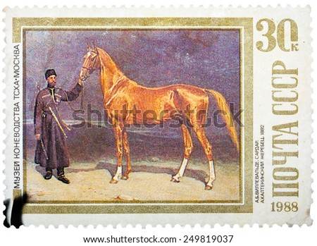 USSR - CIRCA 1988: A stamp printed in USSR, shows Sardar, an Akhaltekinsky Stallion, by A.B. Villevalde, 1882, series Moscow Museum of Horse Breeding, circa 1988 - stock photo