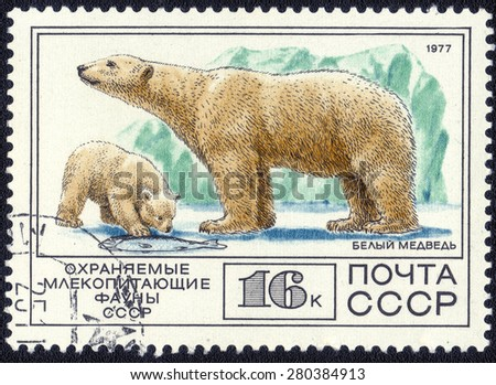 USSR - CIRCA 1977: A Stamp sheet printed in USSR shows Polar bear, collection of Protected Fauna of the USSR, series, circa 1977 - stock photo