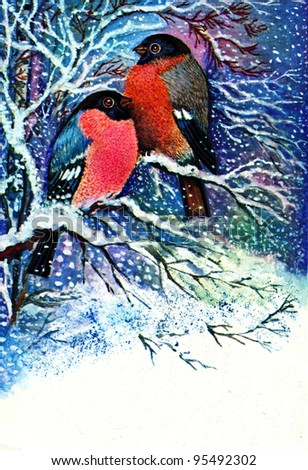 USSR - CIRCA 1979: Postcard printed in the USSR shows draw by Manilova - Two bullfinch on a snowy branch in a forest, circa 1979 - stock photo