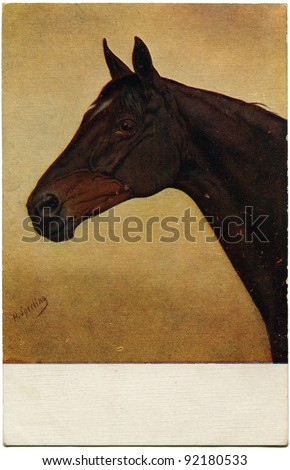USSR - CIRCA 1931: Reproduction of antique postcard shows draw by Sherling - Head of a Horse, circa 1931 - stock photo