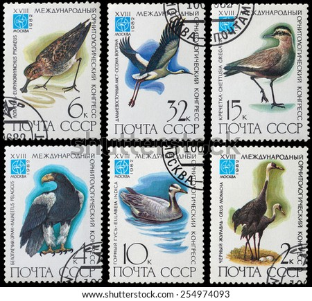 USSR - CIRCA 1982: stamp printed by USSR, shows bird, devoted 18th Ornithological Cong., Moscow circa 1982 - stock photo