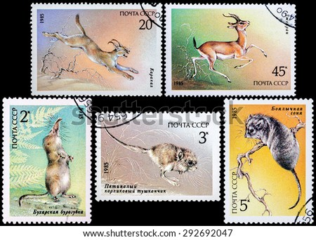 "USSR - CIRCA 1985: Stamps printed in USSR shows various animals from the series ""Endangered Wildlife"", circa 1985   - stock photo"