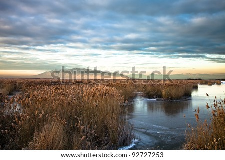 Utah Lake Marsh with Mountain in the Background - stock photo