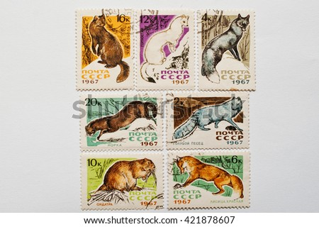 UZHGOROD, UKRAINE - CIRCA MAY, 2016: Collection of postage stamps printed in USSR shows different wild animals, circa 1967 - stock photo
