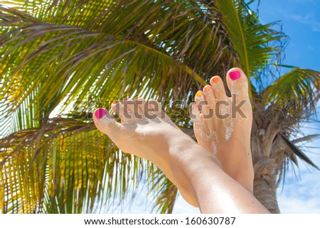 Vacation Concept. Tanning on the Beach. Woman's Bare Feet over palm background - stock photo
