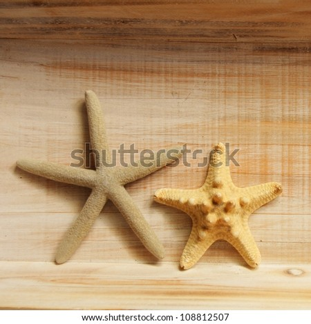 vacation concept with star fish or shellfish and copyspace on wood texture - stock photo