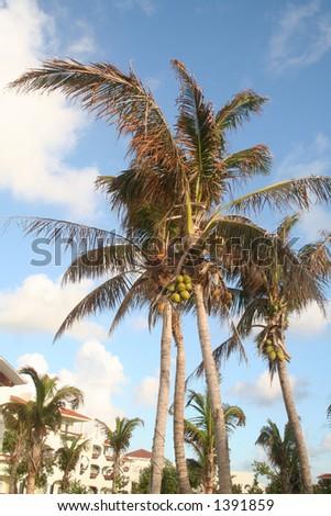 Vacation paradise - stock photo