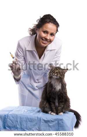 Vaccination. Pretty vet with syringe and feline subject.  Veterinarian have a medical examination a cat. White background. - stock photo