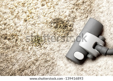Vacuuming very muddy carper - stock photo