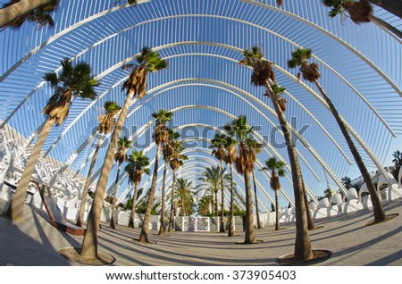 VALENCIA, SPAIN - OCTOBER 07, 2014: Palm alley in the City of Arts and Sciences (Ciudad de las artes y las ciencias) in Valencia, Spain - stock photo