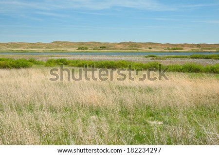 Valentine National Wildlife Refuge in Nebraska.  - stock photo