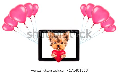 valentine puppy dog holding heart with tablet ?omputer and balloons - stock photo