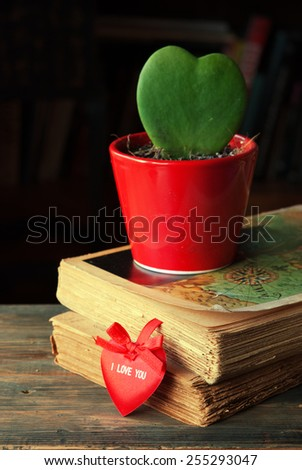 Valentine's card with old vintage books and cactus heart shape on wooden table - stock photo
