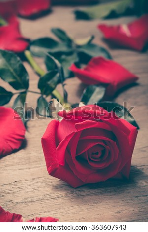 Valentines Day of Red rose on wooden background - stock photo