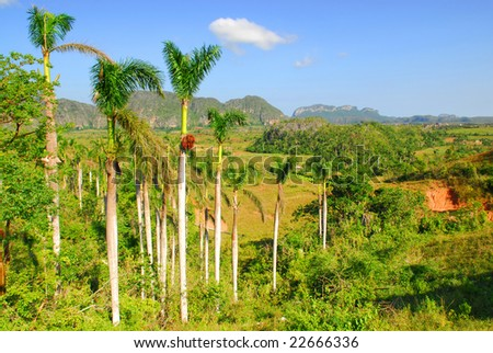 Valley of Vinales in Pinar del Rio, famous for tobacco plantations in Cuba, world heritage site of Unesco - stock photo