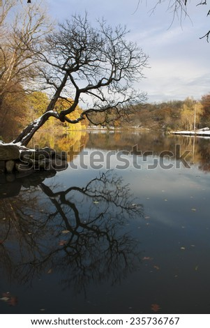 Van Cortlandt park in the County of the Bronx in winter. - stock photo