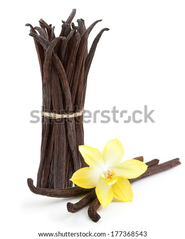 Vanilla pods and orhid flower isolated on white background - stock photo