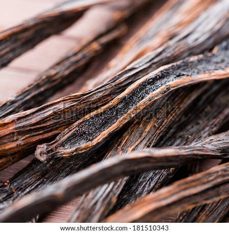 vanilla pods on wooden background. macro. - stock photo