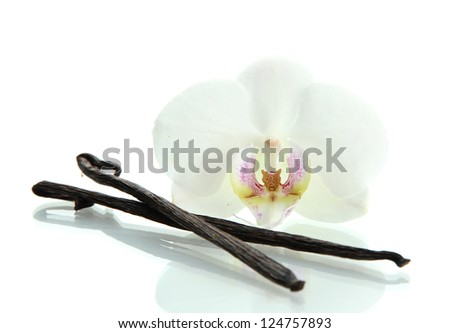 Vanilla pods with flower isolated on white - stock photo