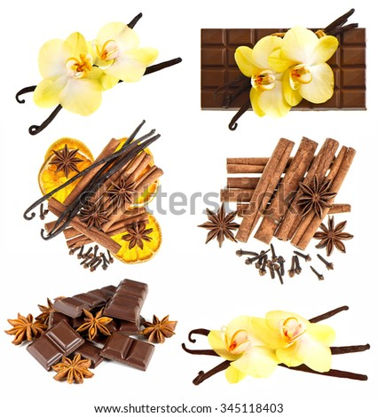 Vanilla pods with orchid flower, chocolate, cinnamon sticks, anise stars, cloves isolated on white background. Spices and condiments - stock photo