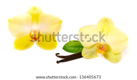 Vanilla sticks with flower - stock photo