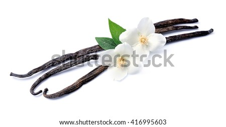 Vanilla sticks with flowers on white backgrounds. - stock photo