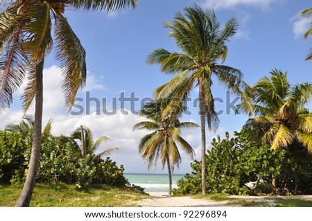 Varadero beach, Cuba - stock photo