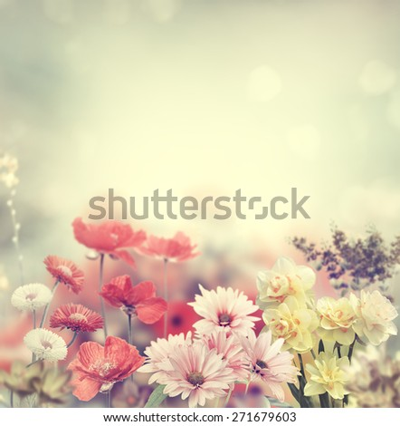 Variation Of Colorful Spring Flowers - stock photo
