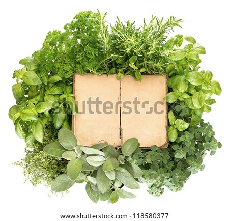 variety fresh herbs and old recipe book over white background - stock photo