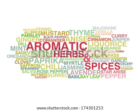 Variety of aromatic herbs and spices. Word cloud concept. Raster version - stock photo