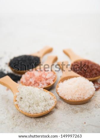 Variety of Different Sea Salts, Black and Red Hawaiian, Gray Celtic, Pink Himalayan, Flaky Murray River Australian - stock photo