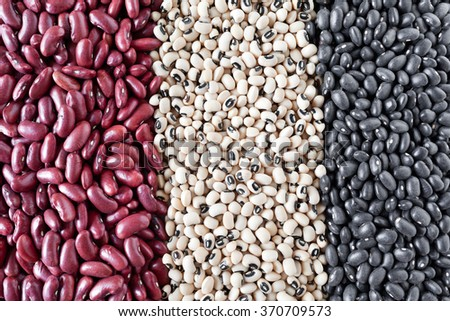 Variety of dried beans in vertical rows, from left to right: kidney beans, black-eyed beans and black lentils (vigna mungo). - stock photo