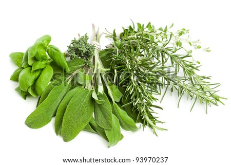 variety of fresh herbs on white background - stock photo