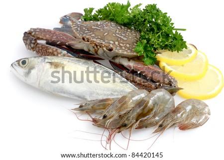 Variety of Fresh Sea Food - stock photo