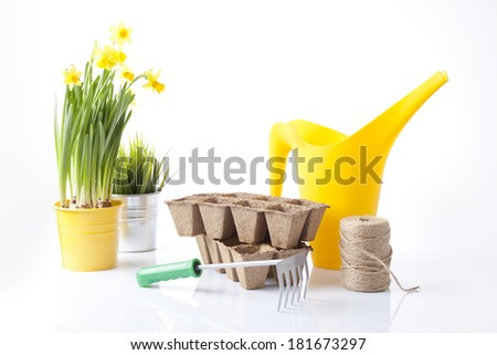 variety of garden tools including watering can and spring flowers - stock photo