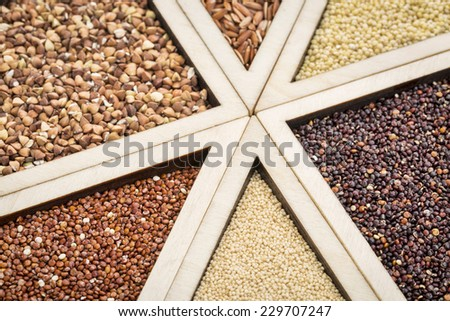 variety of gluten free grains (red and black quinoa, buckwheat, brown rive, amaranth and millet) in a wooden tray, focus on quinoa and amaranth - stock photo