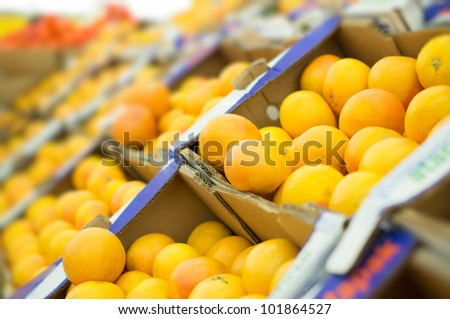 Variety of oranges in boxes in supermarket - stock photo