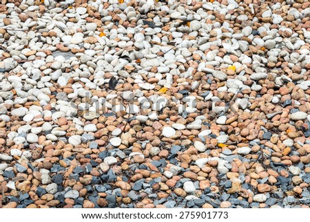 Variety of pebble on the home garden. - stock photo