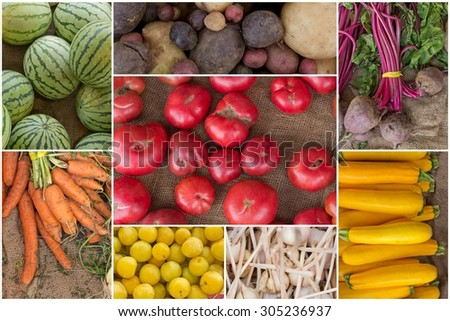 Variety of popular farmers market fruits and vegetables in produce collage - stock photo