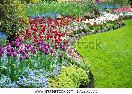 Variety of Spring Flowers Blooming in Beautiful Garden - stock photo