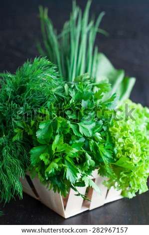 Various Fresh Greens with Lettuce, Mint, Dill and Parsley, Spring onion - stock photo