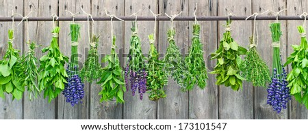 Various fresh herbs hanging in bundle on an iron rod in front of a hut  - stock photo